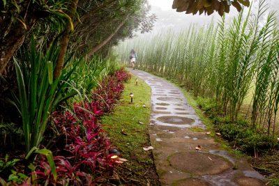 Wellness Spa Costa Rica Pura Vida